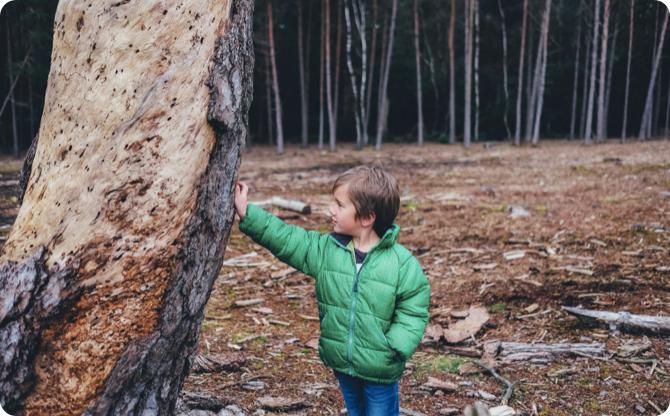Enfant dans une foret qui porte une doudoune verte